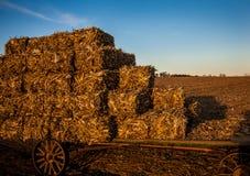 Balle di fieno impilate sul vagone antico di Amish Immagini Stock
