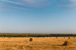 Balle di fieno rotonde in un campo al crepuscolo Fotografia Stock Libera da Diritti