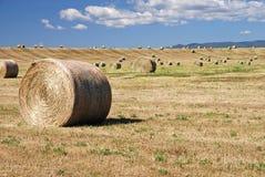 Balle di fieno su terreno coltivabile Fotografia Stock Libera da Diritti
