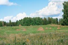 Balle di fieno su una collina verde sui precedenti del cielo nuvoloso Immagine Stock Libera da Diritti