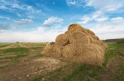 Balle di fieno sul campo dell'azienda agricola Immagine Stock Libera da Diritti