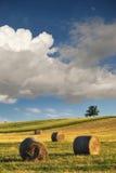 Balle di fieno sul campo dopo il raccolto, Ungheria Immagine Stock Libera da Diritti