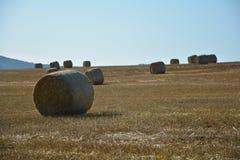 Balle di fieno sul campo raccolto con molte balle di fieno nel horizont Fotografie Stock