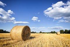 Balle di fieno sul giacimento di grano nella fine dell'estate Fotografie Stock