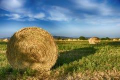Balle di fieno in Toscana Fotografia Stock Libera da Diritti