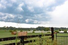 Balle di fieno in un campo con lo stagno Fotografia Stock