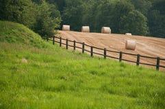 Balle di fieno in un campo in Svizzera immagine stock