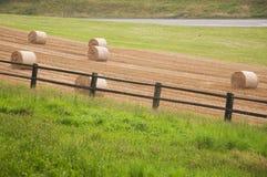 Balle di fieno in un campo in Svizzera immagine stock libera da diritti