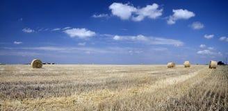 Balle di paglia su un campo wheaten Immagini Stock Libere da Diritti