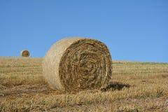 Balle di una paglia e una palla del fieno nell'orizzonte sul campo raccolto Fotografia Stock Libera da Diritti