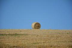 Balle di una paglia nell'orizzonte sul campo raccolto Fotografia Stock