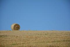 Balle di una paglia nell'orizzonte sul campo raccolto Fotografia Stock Libera da Diritti