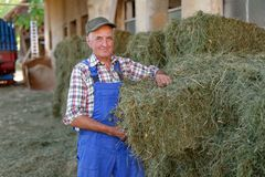 Balle organiche della pila dell'agricoltore Fotografie Stock