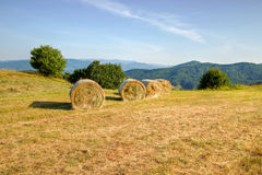 Balled Packs of Hay stock photos