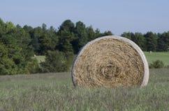 Ballen Heu auf den Bauernhofgebieten und Ackerland im Gras Stockbilder