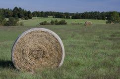 Ballen Heu auf den Bauernhofgebieten und Ackerland im Gras Lizenzfreies Stockfoto