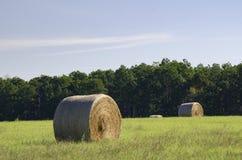 Ballen Heu auf den Bauernhofgebieten und Ackerland im Gras Lizenzfreie Stockbilder