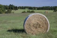 Ballen Heu auf den Bauernhofgebieten und Ackerland im Gras Stockfoto
