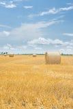 Ballen Heu auf einem gelben erntenden Feld Lizenzfreies Stockbild