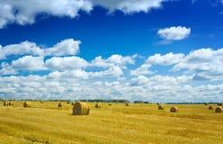 Ballen Stroh auf einem wheaten Feld stockfoto