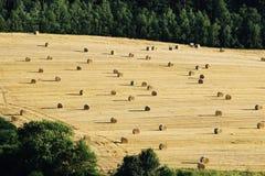Ballen von he auf geerntetem Landwirtschaftsfeld Stockfoto