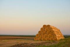 Ballen von Hay Rolled Into Stacks auf dem Feld Stockfotos