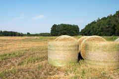 Ballen Weizenstroh verpackten mechanisch in einer grünen Plastikmasche, nachdem sie geerntet hatten Ländliche Landschaft an einem stockfotos