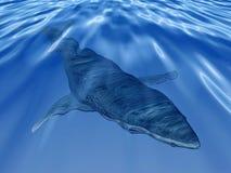 Ballena en el mar azul profundo ilustración del vector