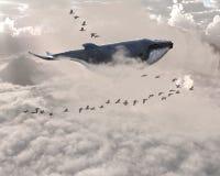 Ballena surrealista del vuelo, pájaros, cielo Fotos de archivo