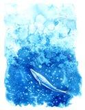 Ballena y agua de Big Blue Fotos de archivo libres de regalías