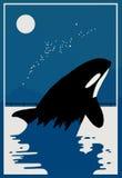 ballenas Imagen de archivo