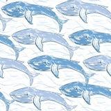 Ballenas azules con las líneas caóticas de seamle a mano del vector de las ondas ilustración del vector