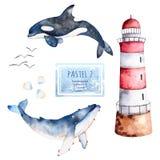 Ballenas, conchas marinas y faro pintados a mano de la acuarela en colores en colores pastel Imagen de archivo