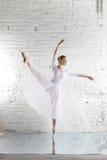 ballerina στο λευκό στοκ εικόνες με δικαίωμα ελεύθερης χρήσης