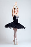 The ballerina Royalty Free Stock Photos