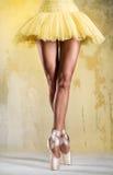 Ballerina Stock Afbeelding
