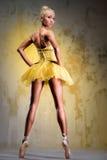 Ballerina Royaltyfria Foton