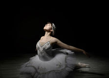 Ballerina binnen   de studio Stock Foto
