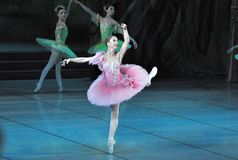 Ballerina dancer Royalty Free Stock Photo