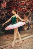 Ballerina dancing against the background of flowering sakura trees and falling petals. Ballerina dancing in a beautiful tutu against the background of flowering royalty free stock photos