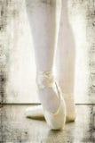 Ballerina die dansende schoenen dragen Royalty-vrije Stock Foto's