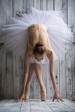 Ballerina dressed in white tutu makes lean forward Stock Images