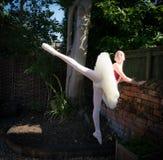 Ballerina in einem Garten stockfotos