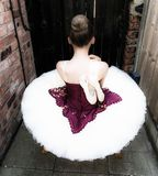 Ballerina in einem Garten stockbild