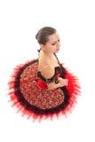 Ballerina gesetzt Lizenzfreie Stockbilder