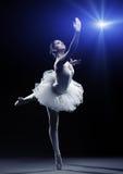 Ballerina-handling arkivfoton