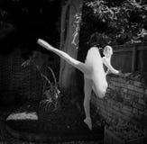 Ballerina i en trädgård Fotografering för Bildbyråer