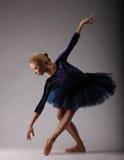 Ballerina incredibilmente bella con l'ente perfetto nella posa blu dell'attrezzatura Balletto classico Immagine Stock Libera da Diritti