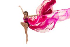 ballerina Junges würdevolles weibliches Balletttänzertanzen über weißem Studio Schönheit des klassischen Balletts stockbilder