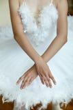 ballerina& x27; mãos de s imagens de stock royalty free